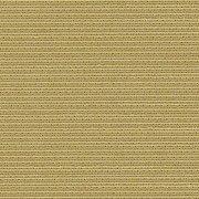41378 欝金色(うこんいろ)